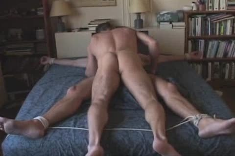 dominant And serf
