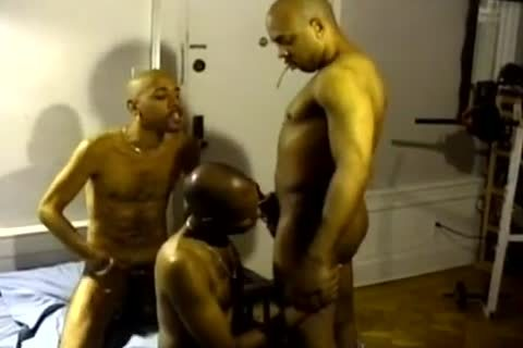 dark And In The Ghetto homosexual males suck Hard penises