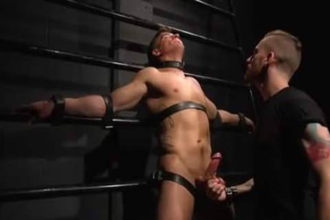 Straight dude Wants merely bondage But he's Made