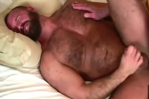 Daddy Bears fuck In daybed