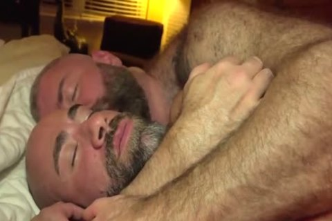 The Bear Likes The big cock Of The Bear Daddy