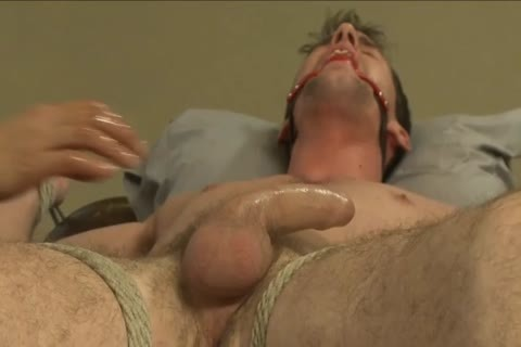 Bryan's never Been Edged In servitude
