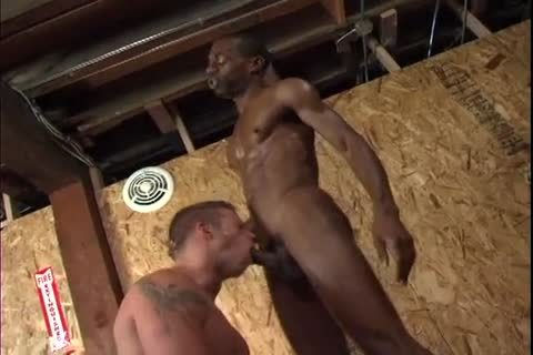 Chase Coxxx Dominates A lad With His massive black ramrod