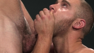 RagingStallion: Furry Shawn Wolfe licks Woody Fox huge balls