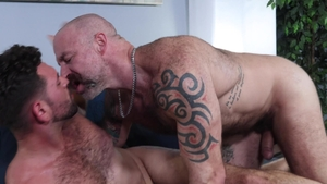 Men Over 30: Inked Musclebear Montreal receives ass to mouth